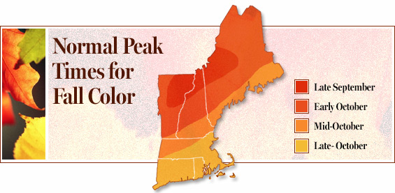 maine foliage map fall color