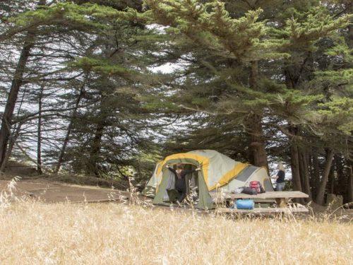 campground stove